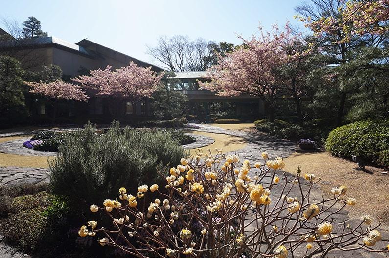 ホテル花水木の朝食。庭園レストランくすの木のメニューを紹介。